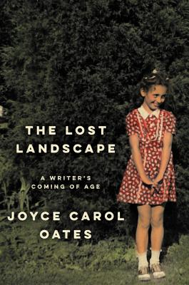 The Lost Landscape Cover