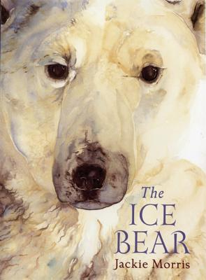 The Ice Bear Cover