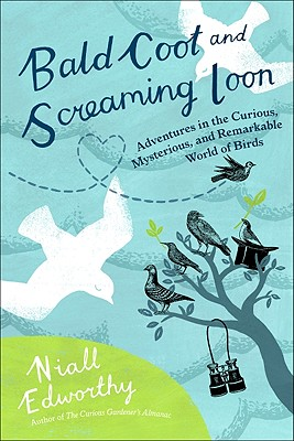 Bald Coot and Screaming Loon: Adventures in the Curious, Mysterious and Remarkable World of Birds Cover Image