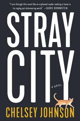 Stray City: A Novel (Hardcover) | King's Books