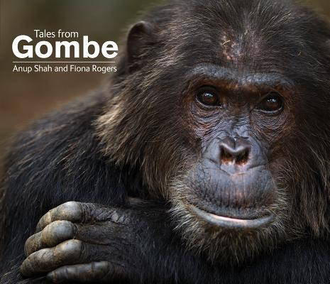 Tales from Gombe Cover Image