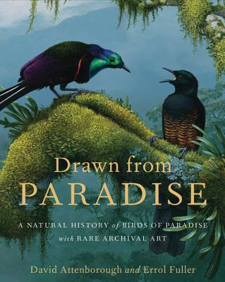 Drawn from Paradise: The Natural History, Art and Discovery of the Birds of Paradise with Rare Archival Art Cover Image