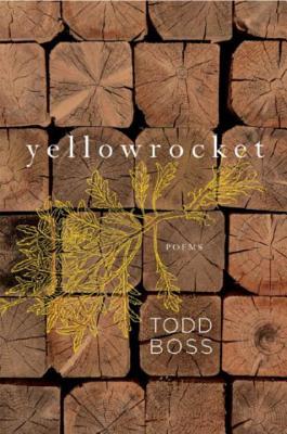 Yellowrocket Cover