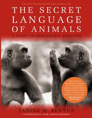 The Secret Language of Animals Cover