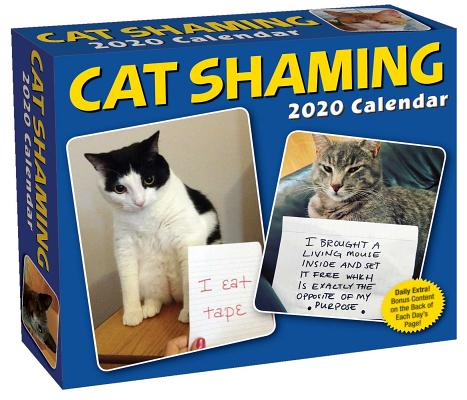 Cat Shaming 2020 Day-to-Day Calendar Cover Image