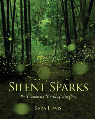 silent sparks cover image