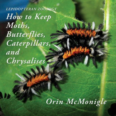 Lepidopteran Zoology: How to Keep Moths, Butterflies, Caterpillars, and Chrysalises Cover Image