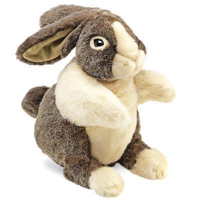 Puppet Dutch Rabbit Cover Image