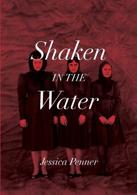 Shaken in the Water Cover Image