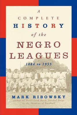 Comp.Hist.Negro Leg-P Cover Image