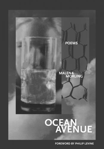 Cover for Ocean Avenue