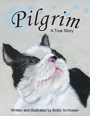 Pilgrim: A True Story Cover Image