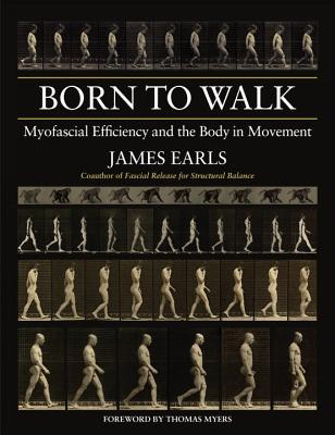 Born to Walk: Myofascial Efficiency and the Body in Movement Cover Image