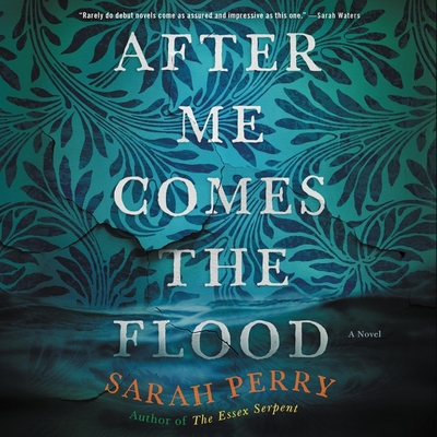 After Me Comes the Flood Cover Image