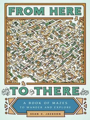From Here to There: A Book of Mazes to Wander and Explore (Maze Books for Kids, Maze Games, Maze Puzzle Book) Cover Image