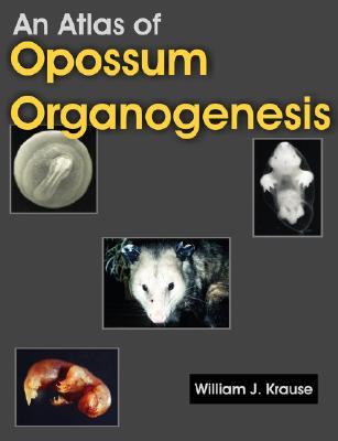 An Atlas of Opossum Organogenesis: Opossum Development Cover Image