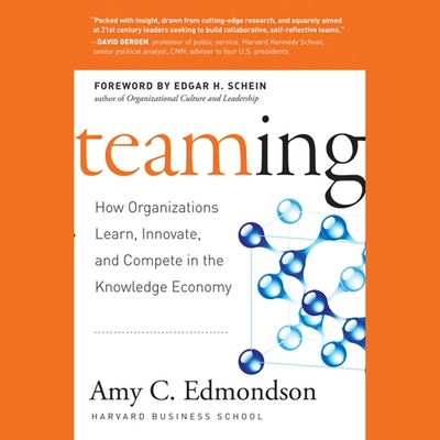 Teaming Lib/E: How Organizations Learn, Innovate, and Compete in the Knowledge Economy Cover Image