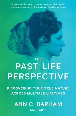 Cover for The Past Life Perspective