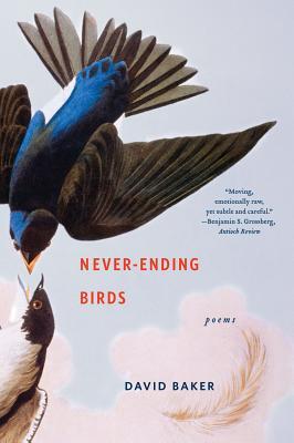 Never-Ending Birds Cover