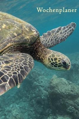 Wochenplaner: Schildkröte - A5 6x9 Tagebuch I Wochenkalender I Jahresplaner I Jahreskalender I Terminplaner I für Männer und Frauen, Cover Image