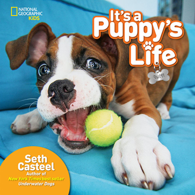 It's a Puppy's Life by Seth Casteel