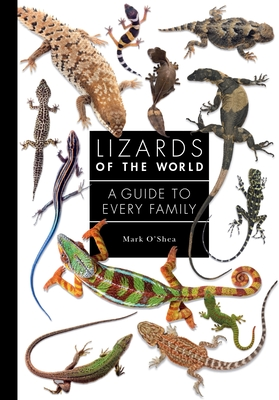 Lizards of the World: A Guide to Every Family Cover Image