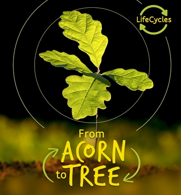 Lifecycles - Acorn to Tree (Lerner) (Life Cycles) Cover Image