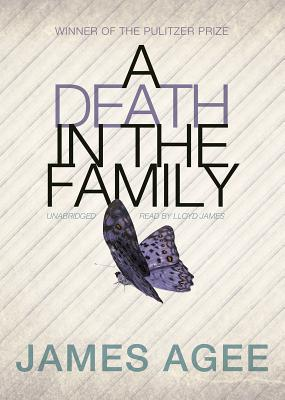 A Death in the Family Cover