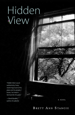 Hidden View Cover Image