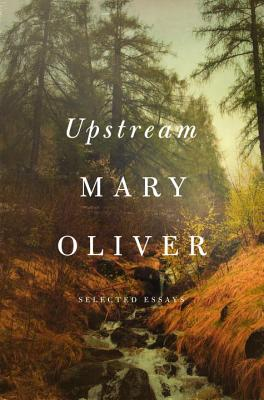 Upstream Cover