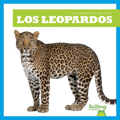 Los Leopardos (Leopards) (Grandes Felinos (Big Cats)) Cover Image