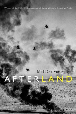 Afterland Cover