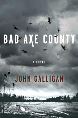 Bad Axe County: A Novel Cover Image
