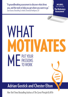 What Motivates Me cover image