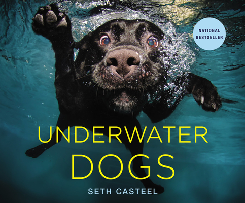Underwater Dogs Cover Image