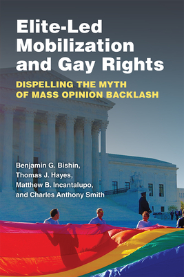 Elite-Led Mobilization and Gay Rights: Dispelling the Myth of Mass Opinion Backlash Cover Image