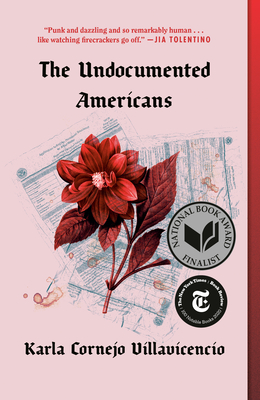 The Undocumented Americans Cover Image