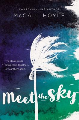 Meet the Sky Cover Image