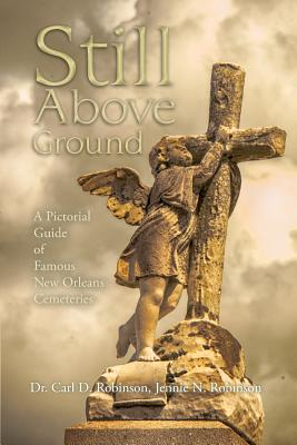 Still Above Ground Cover Image
