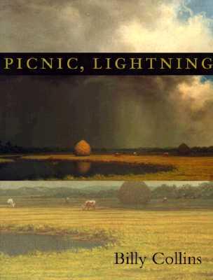 Picnic Lightning Pitt Poetry Series Paperback Sundog Books