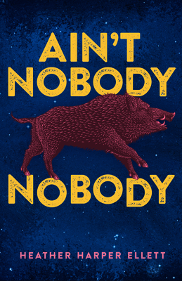 Ain't Nobody Nobody Cover Image