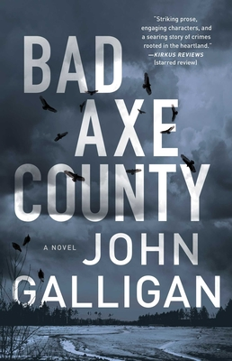 Bad Axe County: A Novel (A Bad Axe County Novel #1) Cover Image
