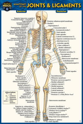Anatomy of the Joints & Ligaments (Pocket-Sized Edition - 4x6 Inches) Cover Image