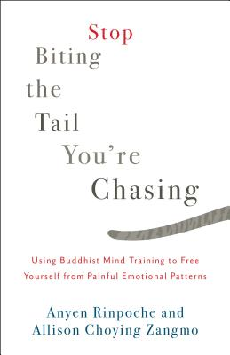 Stop Biting the Tail You're Chasing: Using Buddhist Mind Training to Free Yourself from Painful Emotional Patterns Cover Image