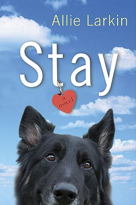Stay Cover