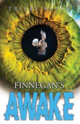 Finnegan's Awake Cover Image
