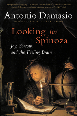 Looking for Spinoza Cover