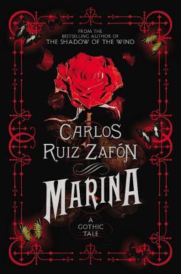 Marina Cover