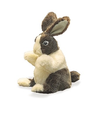 Baby Dutch Rabbit Puppet Cover Image