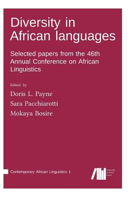 Diversity in African Languages Cover Image